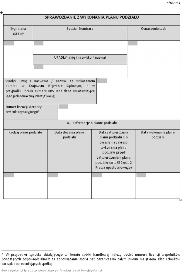 Sprawozdanie z wykonania planu podziału